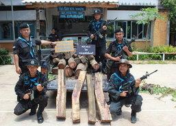 ทหารพราน สกัดรถขนไม้พะยูงมูลค่านับล้าน