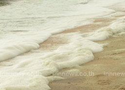 พบคราบน้ำมันชายหาดสัตหีบ ปลาตายอื้อ