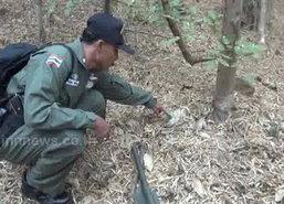 พบระเบิดสังหาร ชนิด M67 กลางป่าลำปาง