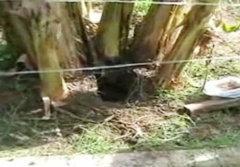 ศพทารกฝังในหมู่บ้าน วิ่งแจ้งตร.กลับมาหาย?