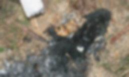 2 ชายหญิงทิ้งศพทารก จุดไฟเผาทิ้ง ซอยแบริ่ง 20