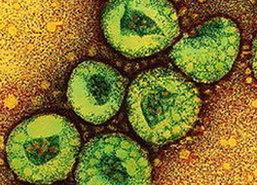 WHOพบผู้เสียชีวิตโคโรนาไวรัสในแอฟริกา
