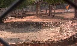 อ่างเก็บน้ำห้วยทราย จ.เพชรบุรี แล้งหนักถึงขั้นไม่มีน้ำ กระทบสัตว์ป่า-สัตว์ของกลาง 1,000 ตัว