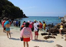 คุมเข้มเกาะไข่พังงาหลังปะการังเสียหาย80%