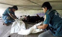 สลด! ขอทานนอนเป็นศพใต้สะพาน หลังฉีดวัคซีนป้องกันพิษสุนัขบ้าไม่ครบ