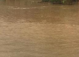 ฝนตกน้ำท่วมอ.สายบุรีปัตตานีหนักสุดรอบ10ปี