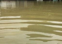 โรงพยาบาลบางสะพานน้ำลดแล้วคาดวันนี้แห้ง