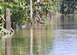 ต.ท่าข้ามอ.พุนพินจมใต้น้ำเกือบ3ม.2พันคนเดือดร้อน