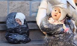 """ขำหนักมาก """"เป่าเปา"""" เที่ยวญี่ปุ่น พ่อแม่จับใส่ถุงดำสู้อากาศหนาว"""