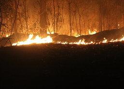 ผู้ว่าฯตากเข้มมาตรการ60วันห้ามเผาเร่งหาคนทำ