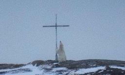 ช่างภาพชาวแคนาดาเผยภาพหมีขั้วโลกนั่งเกาะไม้กางเขน คล้ายอธิษฐาน