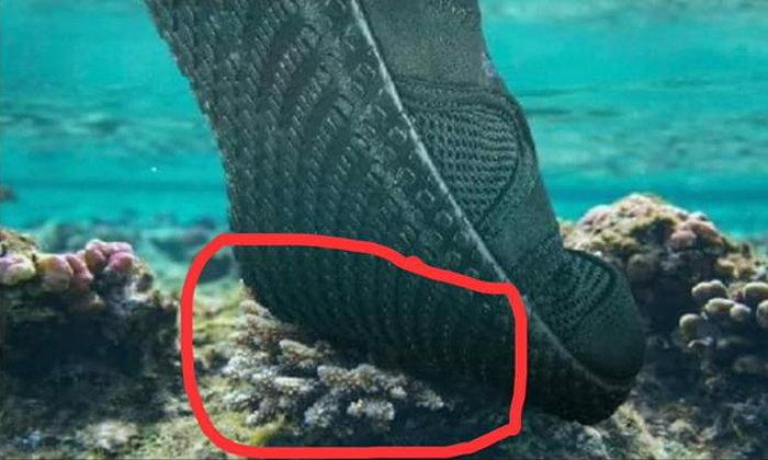 อ.ธรณ์ ปรี๊ด โฆษณาขายรองเท้าใช้ภาพเหยียบปะการัง