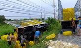 รถขนไก่เสียหลักตกข้างทางปทุมฯไก่ตายอื้อ