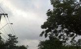 ไทยตอนบนอากาศร้อนจัดฝนฟ้าคะนองลมกระโชกแรง