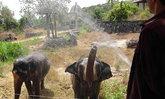 แล้งกระทบสวนสัตว์สงขลาเหลือน้ำใช้2เดือน