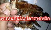ผงะ! พบหนอนในปลาราดพริก ขนาดเท่าเมล็ดข้าวสาร