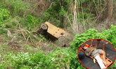 อาถรรพ์เบญจเพศ หนุ่มขับรถบดถนนตกเหวลึกโชคดีรอดรอดปฏิหาริย์
