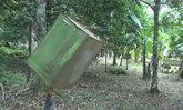 ชาวสตูลสุดทนลิงบุกสวนพบวิธีไล่ได้ผลดี