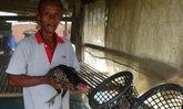 ลักไก่ชนอ่างทองร่วมหมดเล้าสูญเงินกว่าห้าหมื่น
