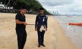 แมงกะพรุนขึ้นหาดจอมเทียนนักท่องเที่ยวโดนเจ็บ