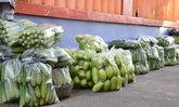 ตลาดค้าส่งผักตรังคึกคักรับประเพณีถือศีลกินเจ