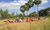 ทั่วไทยร่วมใจทำความดีหลากรูปแบบถวายในหลวงร.9