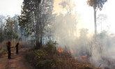 โคราชเร่งสกัดไฟป่าครบุรีเสียหายแล้ว500ไร่
