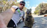 ควอกก้าน่ารัก กระโดดยิ้มหวานหานักท่องเที่ยวในออสเตรเลีย