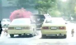 ภาพน่าเศร้า หมาวิ่งไล่ตามรถเก๋งเป็นกิโล คาดถูกเอามาทิ้ง