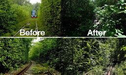คนจีนเสียดาย รถไฟอุโมงค์ต้นไม้ 3 ปีต่อมา..รกร้างน่ากลัว