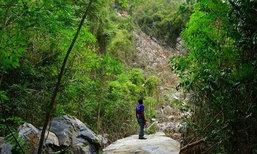 พัทลุงฝนหนักหินภูเขาพังถล่มทับพื้นที่สวนยาง