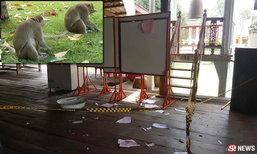 ฝูงลิงเมืองพิจิตรป่วน ยกพวกฉีกบัญชีรายชื่อลงประชามติ
