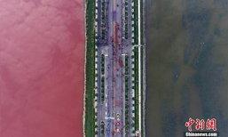 ตื่นตา! ทะเลสาบเกลือเมืองจีน เกิดปรากฏการณ์น้ำ 2 สี