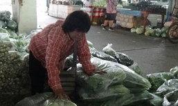 ราคาผักสดที่อ่างทองยังทรงตัวแม้ใกล้เทศกาลกินเจ