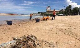 จนท.เก็บขยะเกลื่อนหาดพัทยาคาดพัดมาตามน้ำ