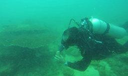พังงาเก็บขยะฟื้นแหล่งอาศัยที่หากินเต่าทะเล