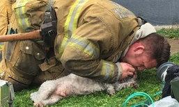 ชีวิตเล็กๆ ก็สำคัญ พนักงานดับเพลิงทุ่มเต็มที่ ช่วยชีวิตหมาน้อย