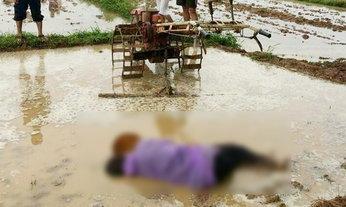 ภาพเศร้า พบศพลุงชาวนาวัย 57 นอนจมโคลน เสียชีวิตขณะไถนา