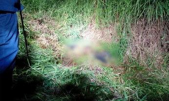 ฆ่าสยองหมกหญ้า หนุ่มห้างถูกกรีดท้องตาย รูปดาว 5 แฉก