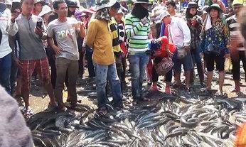พ่อค้าปลาเขมรเทปลาประท้วงศุลกากรไทย หลังเข้มงวดเก็บภาษีนำเข้า