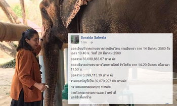 """""""โซไรดา"""" ไม่ตอบโต้กระแสโจมตี ยอดบริจาคช่วยมูลนิธิเพื่อนช้างพุ่ง 35ล้านแล้ว"""