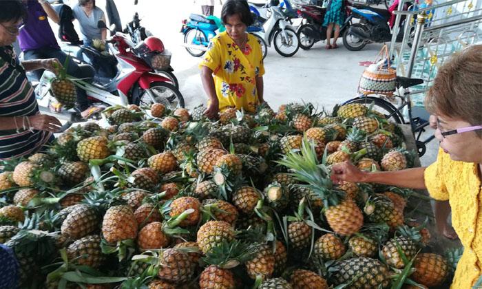 ซึ้ง! วัดโพธิญาณช่วยซื้อสับปะรดจาก อ.วังทองอีก 11 ตัน แจกชาวบ้านในวันพระ