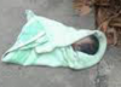 ศพเด็กทารกถูกทิ้งในกองขยะหน้าหอพักย่านดอนเมือง