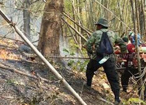 ไฟลามไหม้ป่าแม่พวก คาดเผาหาของป่า