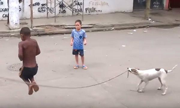 คนทั้งโลก..เอ็นดู คลิปสุนัขคาบเชือกแกว่งให้เด็กๆ โดดเล่นสนุก