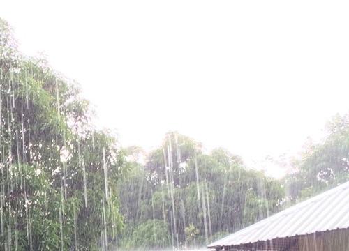 อุตุฯเตือนไทยภาคใต้มีฝนเพิ่ม-กทม.มีฝน20%